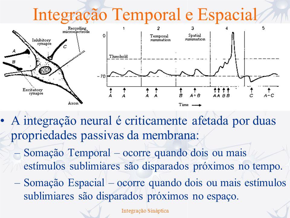 Integração Temporal e Espacial A integração neural é criticamente afetada por duas propriedades passivas da membrana: –Somação Temporal – ocorre quand