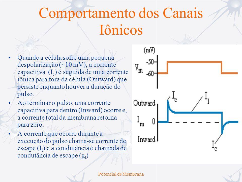 Potencial de Membrana Comportamento dos Canais Iônicos Quando a célula sofre uma pequena despolarização (~10 mV), a corrente capacitiva (I c ) é segui