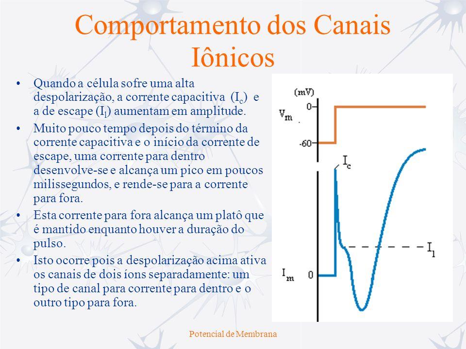 Potencial de Membrana Comportamento dos Canais Iônicos Quando a célula sofre uma alta despolarização, a corrente capacitiva (I c ) e a de escape (I l