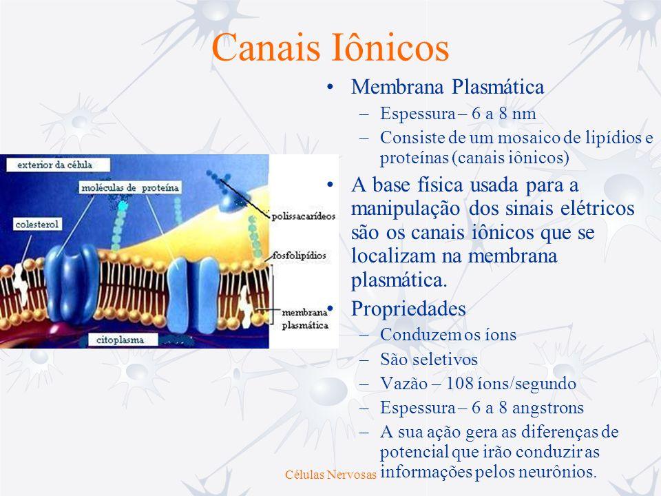 Canais Iônicos Membrana Plasmática –Espessura – 6 a 8 nm –Consiste de um mosaico de lipídios e proteínas (canais iônicos) A base física usada para a m
