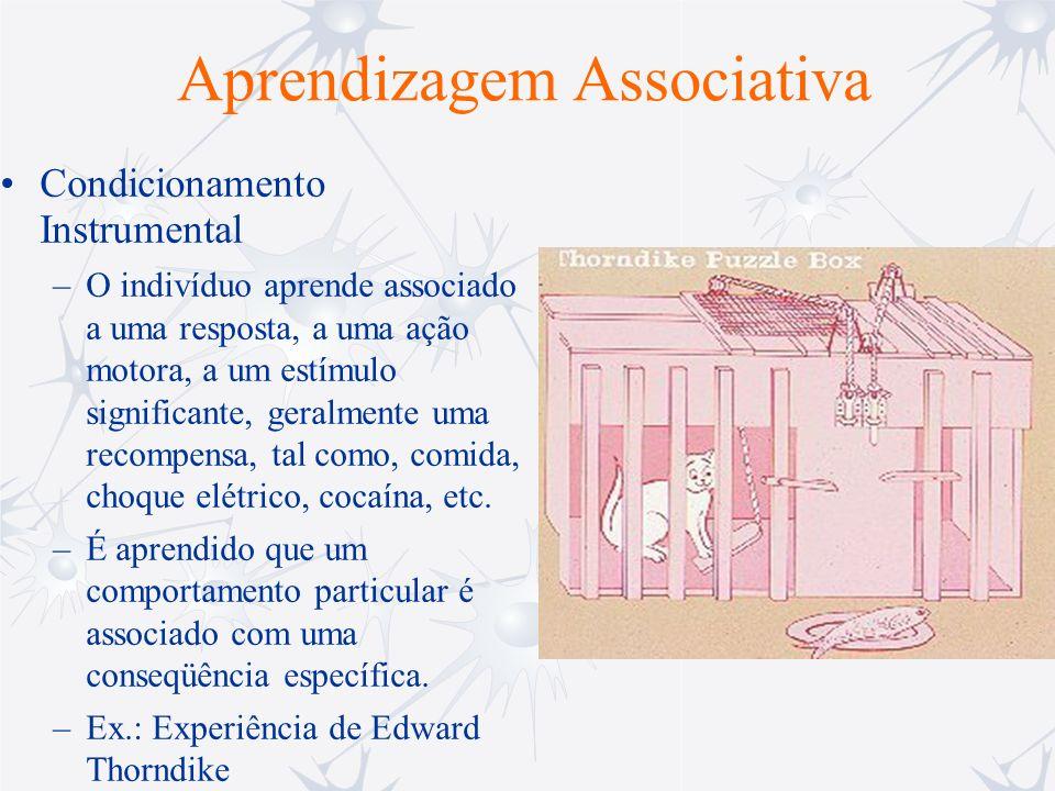 Aprendizagem Associativa Condicionamento Instrumental –O indivíduo aprende associado a uma resposta, a uma ação motora, a um estímulo significante, ge
