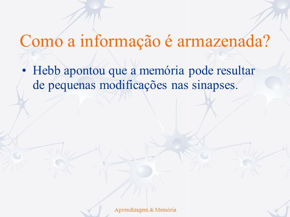 Aprendizagem & Memória Hebb apontou que a memória pode resultar de pequenas modificações nas sinapses. Como a informação é armazenada?