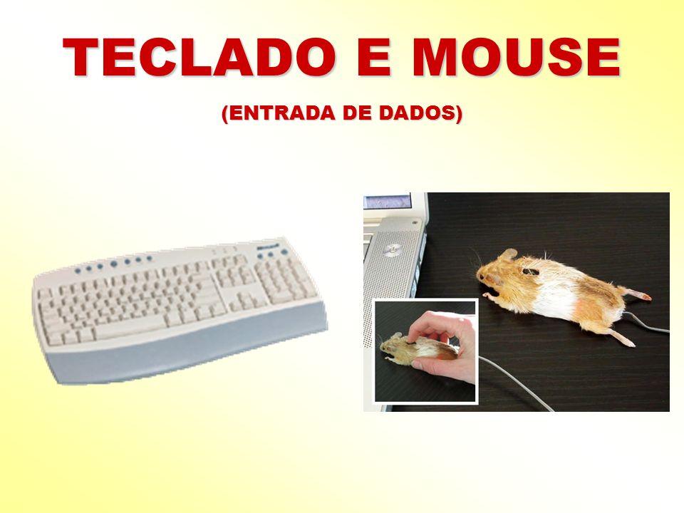 TECLADO E MOUSE (ENTRADA DE DADOS)
