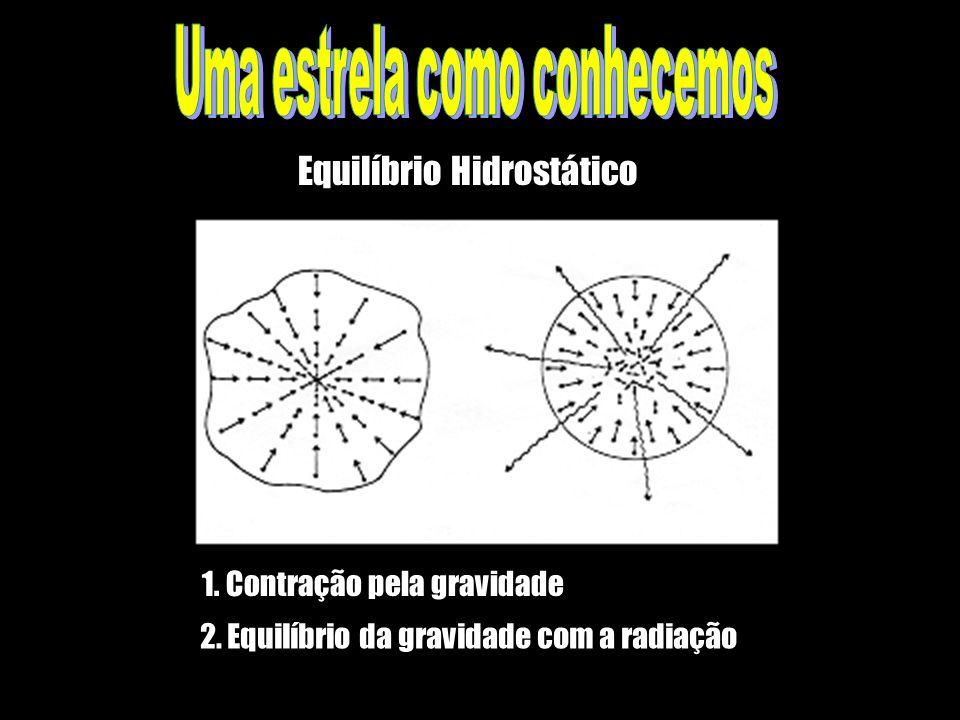 1. Contração pela gravidade 2. Equilíbrio da gravidade com a radiação Equilíbrio Hidrostático