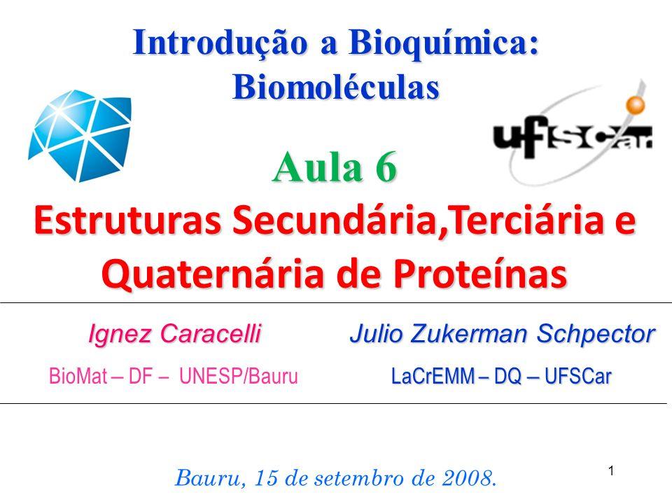 1 Ignez Caracelli BioMat – DF – UNESP/Bauru Bauru, 15 de setembro de 2008. Aula 6 Estruturas Secundária,Terciária e Quaternária de Proteínas Introduçã
