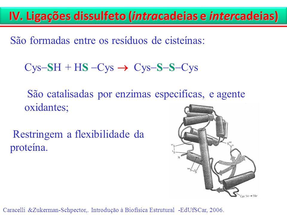 IV. Ligações dissulfeto (intracadeias e intercadeias) Caracelli &Zukerman-Schpector,. Introdução à Biofísica Estrutural -EdUfSCar, 2006. São formadas