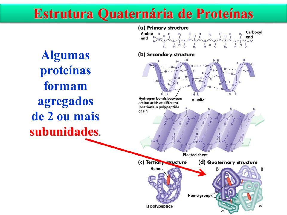 Estrutura Quaternária de Proteínas Algumas proteínas formam agregados subunidades de 2 ou mais subunidades.