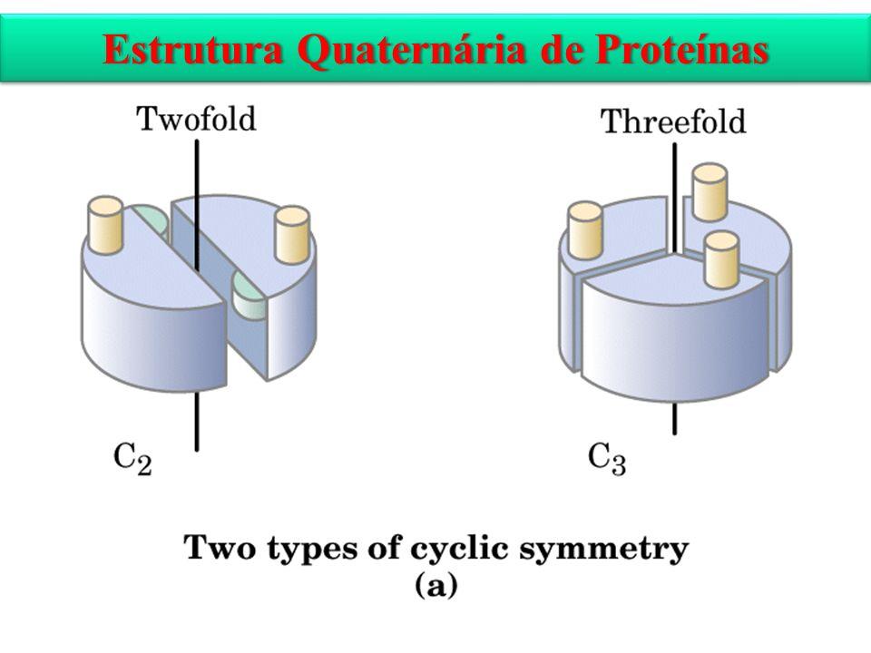 Estrutura Quaternária de ProteínasEstrutura Quaternária de Proteínas