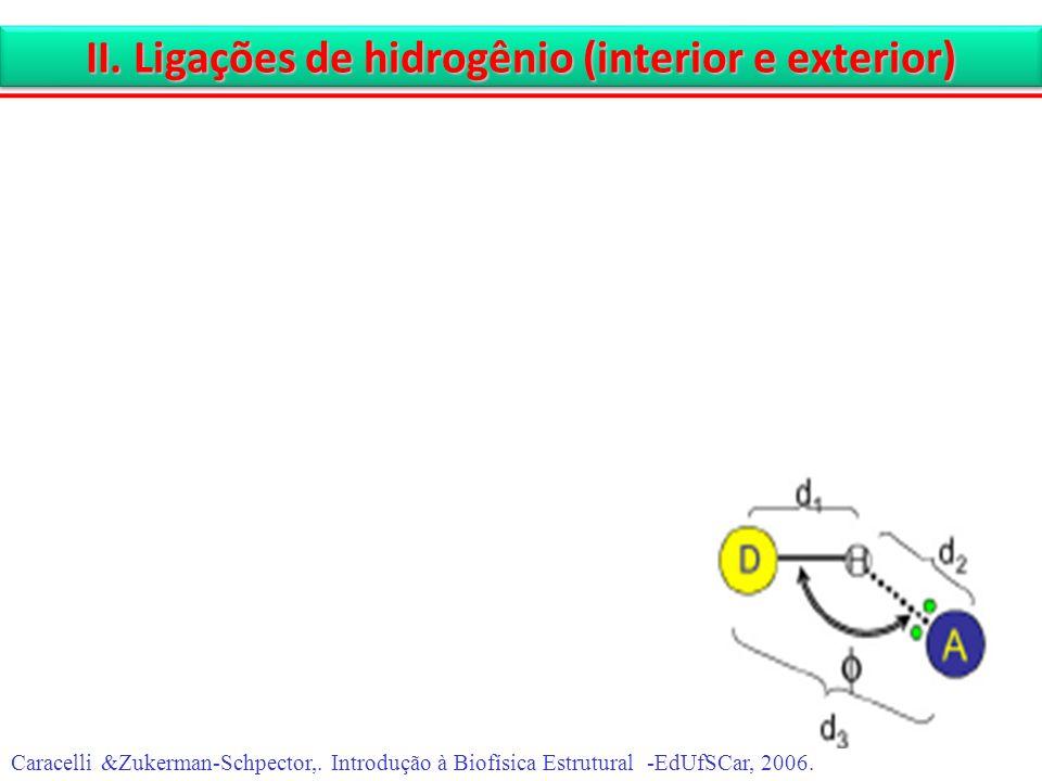 II. Ligações de hidrogênio (interior e exterior) Caracelli &Zukerman-Schpector,. Introdução à Biofísica Estrutural -EdUfSCar, 2006.