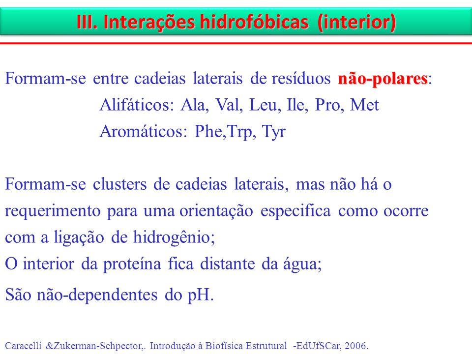 III. Interações hidrofóbicas (interior) Caracelli &Zukerman-Schpector,. Introdução à Biofísica Estrutural -EdUfSCar, 2006. não-polares Formam-se entre
