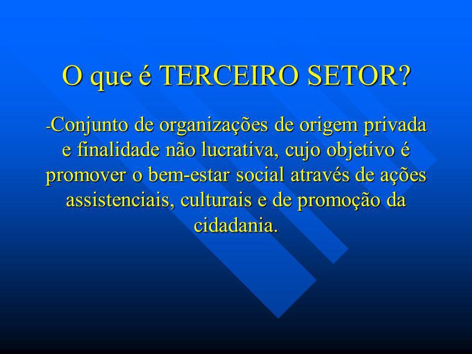 O que é TERCEIRO SETOR? - Conjunto de organizações de origem privada e finalidade não lucrativa, cujo objetivo é promover o bem-estar social através d