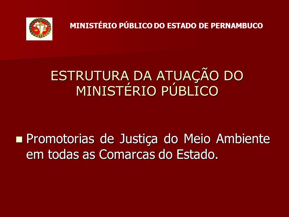 ESTRUTURA DA ATUAÇÃO DO MINISTÉRIO PÚBLICO Promotorias de Justiça do Meio Ambiente em todas as Comarcas do Estado.