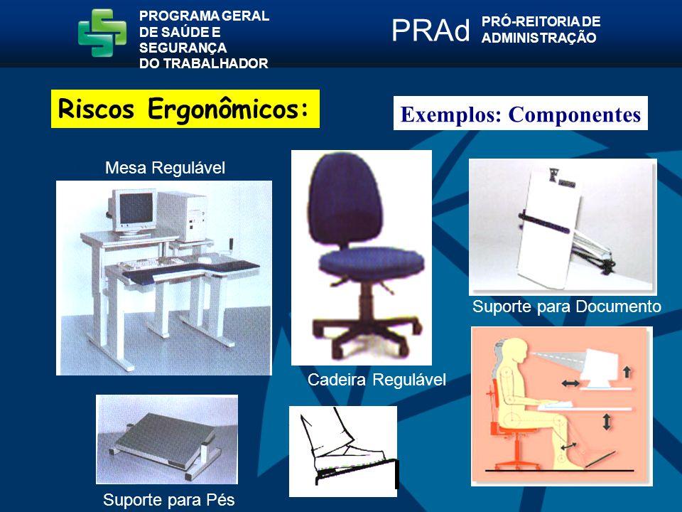 Mesa Regulável Suporte para Documento Cadeira Regulável Suporte para Pés Exemplos: Componentes PROGRAMA GERAL DE SAÚDE E SEGURANÇA DO TRABALHADOR PRÓ-