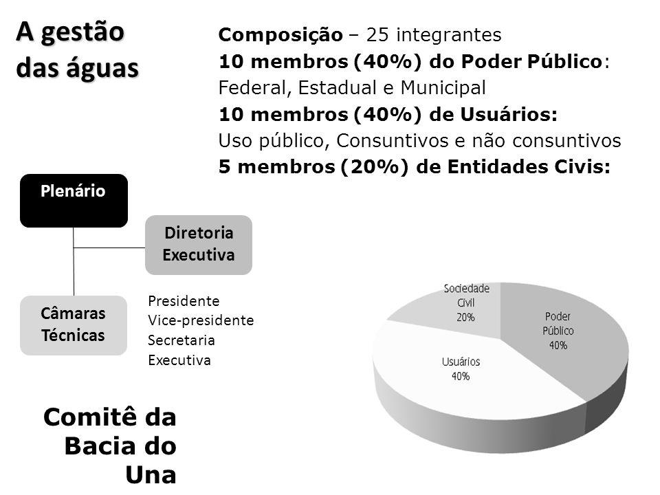 A gestão das águas Comitê da Bacia do Una Composição – 25 integrantes 10 membros (40%) do Poder Público: Federal, Estadual e Municipal 10 membros (40%