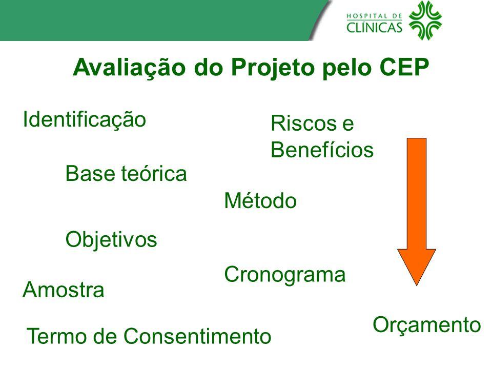 Avaliação do Projeto pelo CEP Termo de Consentimento Identificação Base teórica Objetivos Amostra Riscos e Benefícios Método Cronograma Orçamento