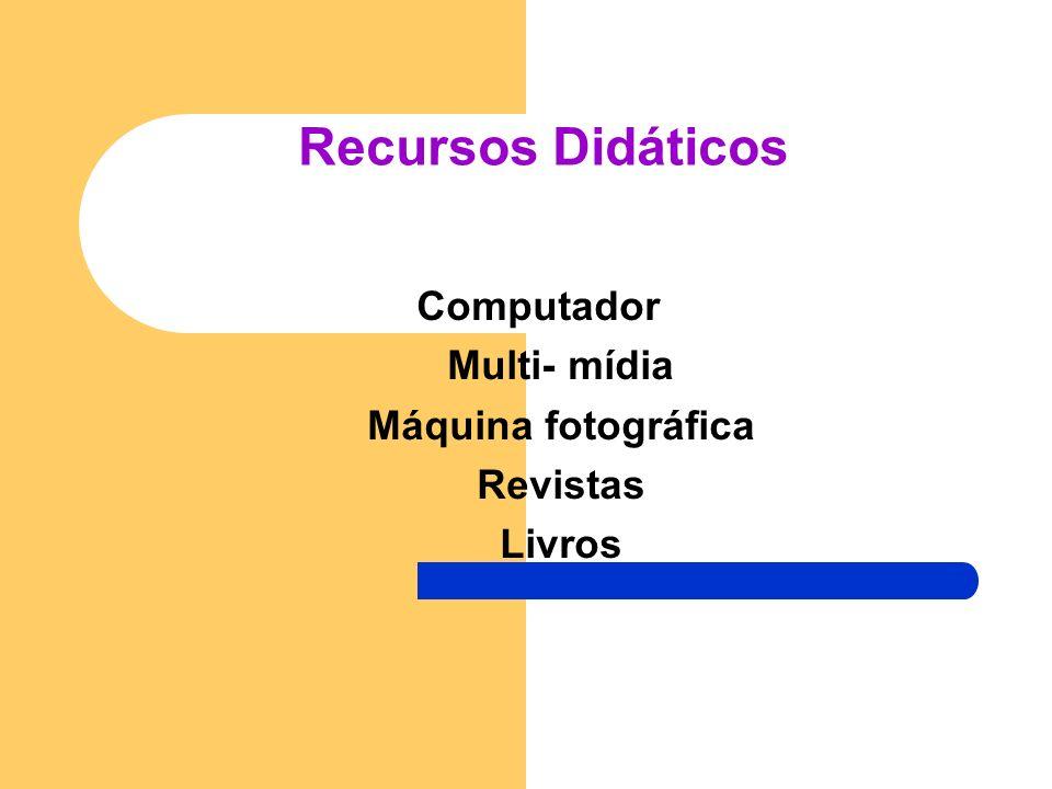 Estratégias Pedagógicas da Aula REGIÃO SUL DO BRASIL A turma dividida em grupos irá pesquisar os estados que fazem parte dessa região. Confeccionar ca