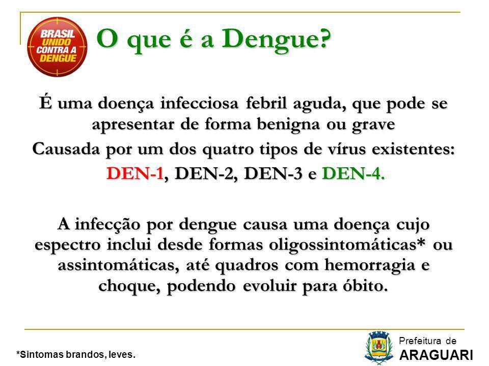 O que é a Dengue? É uma doença infecciosa febril aguda, que pode se apresentar de forma benigna ou grave Causada por um dos quatro tipos de vírus exis