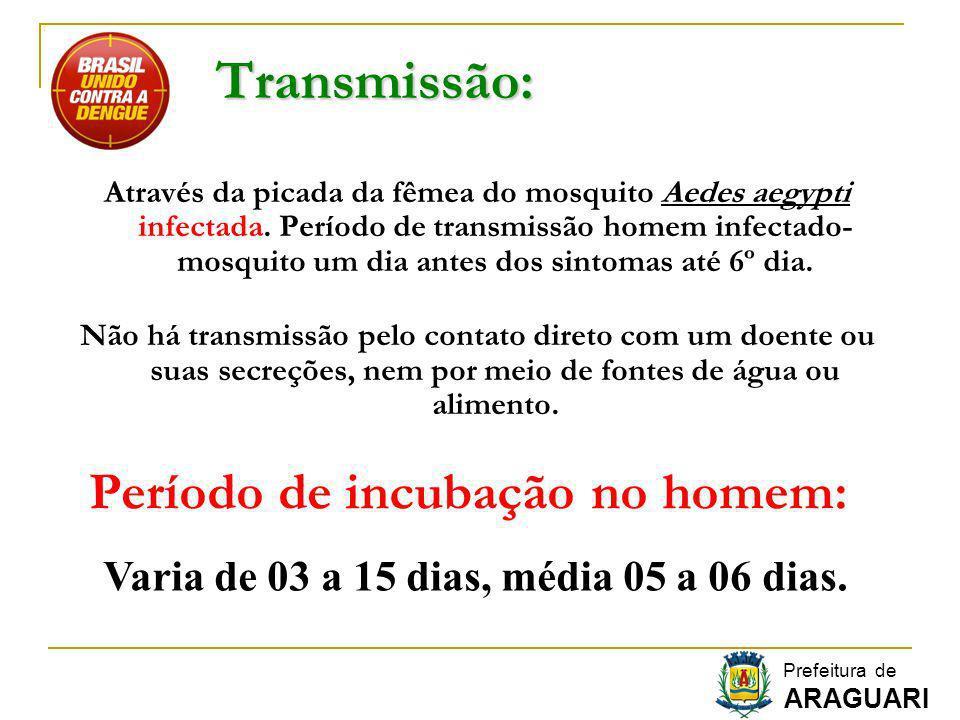 Transmissão: Através da picada da fêmea do mosquito Aedes aegypti infectada. Período de transmissão homem infectado- mosquito um dia antes dos sintoma