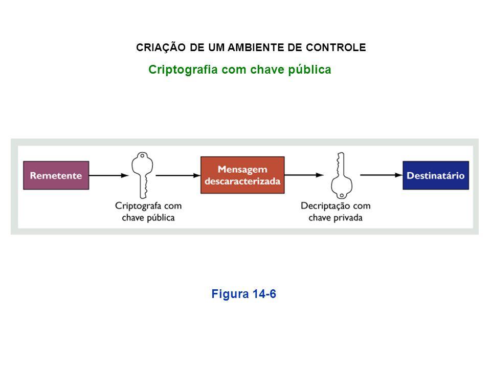 Criptografia com chave pública Figura 14-6 CRIAÇÃO DE UM AMBIENTE DE CONTROLE