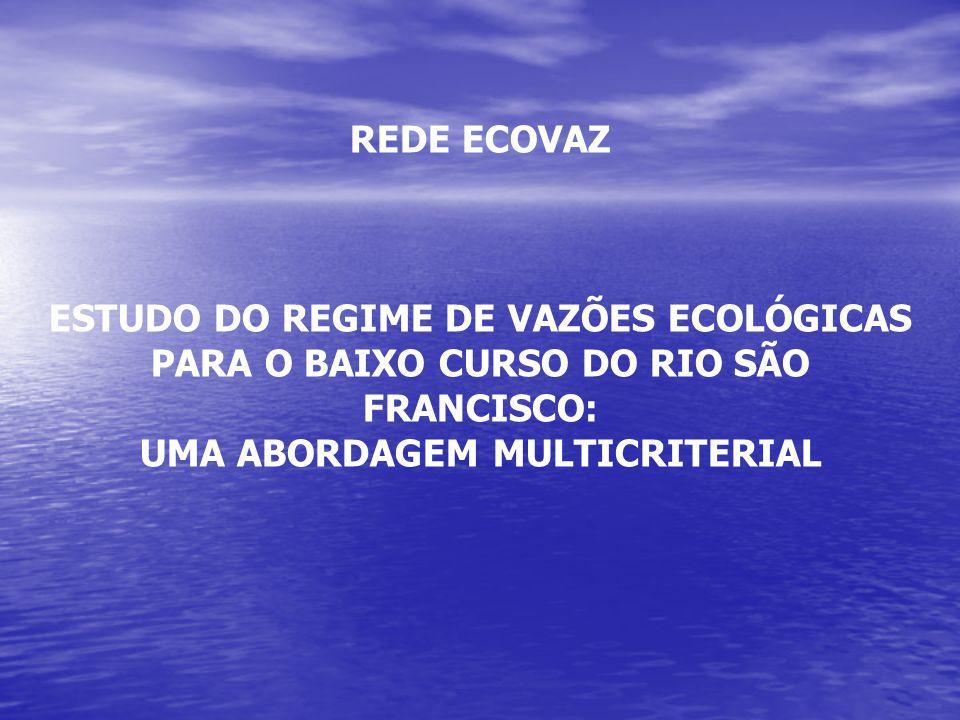 REGIME DE VAZÕES ECOLÓGICAS COMO CONDICIONANTES DA CADEIA PRODUTIVA: um estudo de cenários no baixo curso do Rio São Francisco Projeto Coord: João Damásio (UFBa)