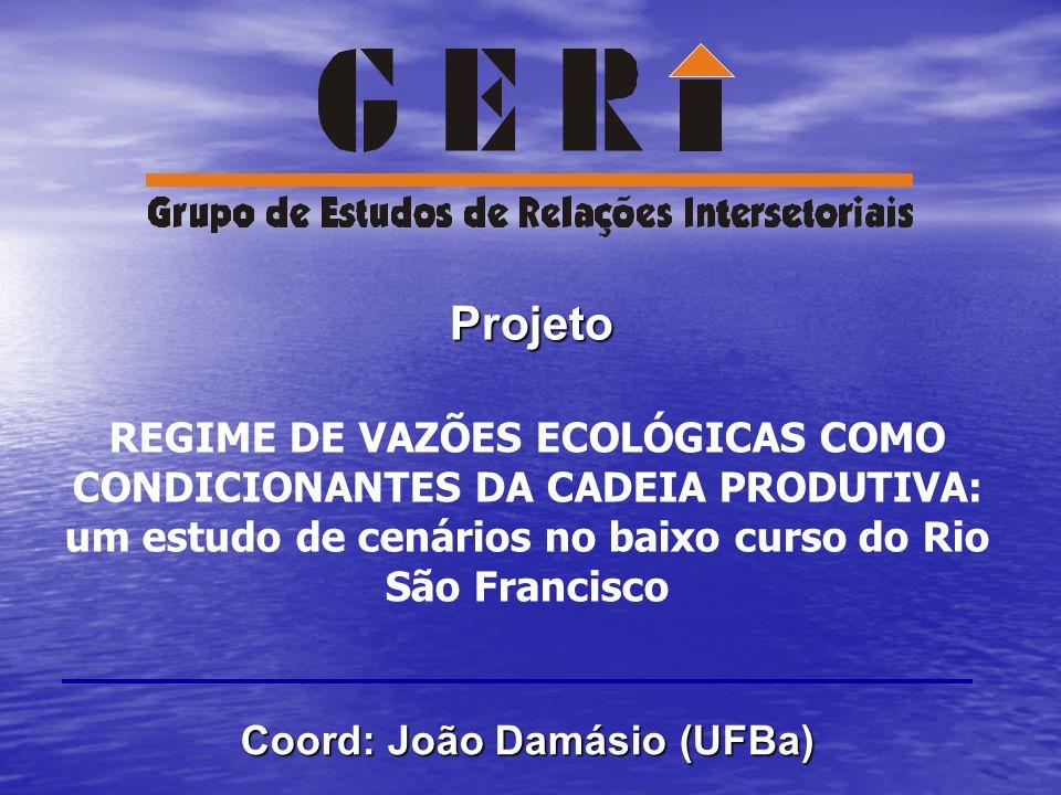 REGIME DE VAZÕES ECOLÓGICAS COMO CONDICIONANTES DA CADEIA PRODUTIVA: um estudo de cenários no baixo curso do Rio São Francisco Projeto Coord: João Dam
