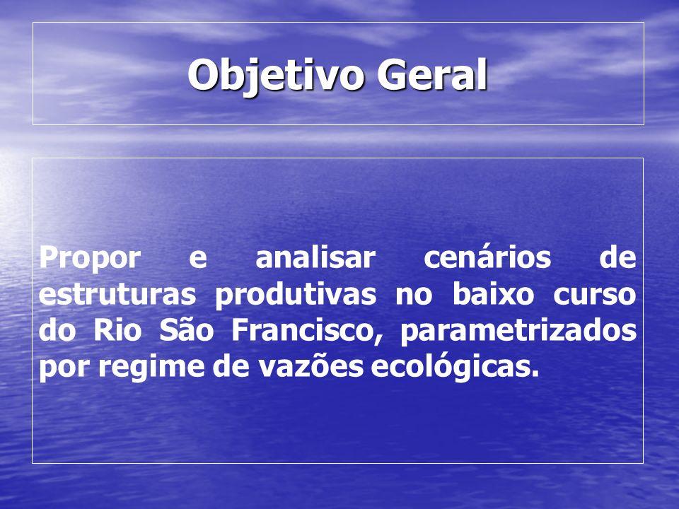Objetivo Geral Propor e analisar cenários de estruturas produtivas no baixo curso do Rio São Francisco, parametrizados por regime de vazões ecológicas