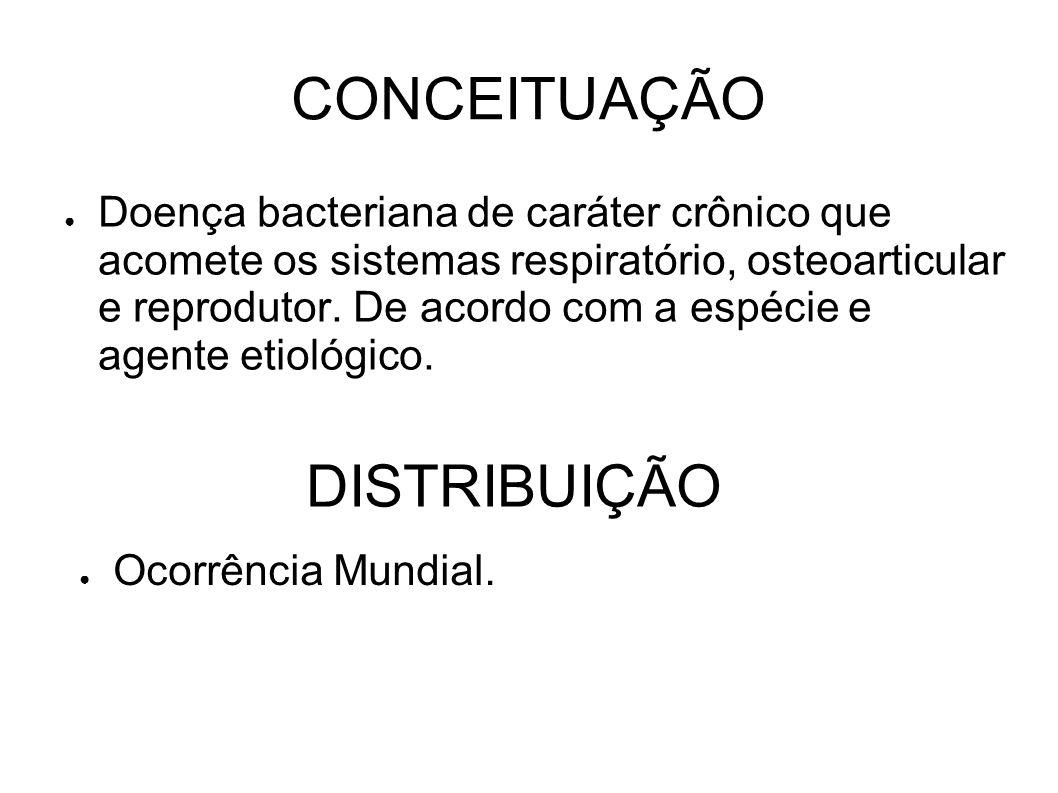 CONCEITUAÇÃO Doença bacteriana de caráter crônico que acomete os sistemas respiratório, osteoarticular e reprodutor. De acordo com a espécie e agente