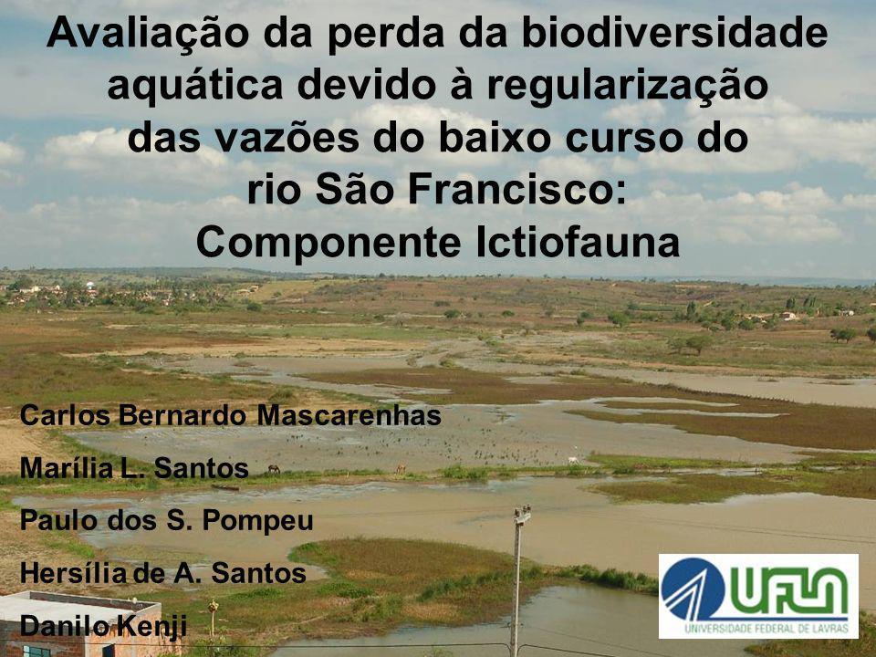 Avaliação da perda da biodiversidade aquática devido à regularização das vazões do baixo curso do rio São Francisco: Componente Ictiofauna Carlos Bern