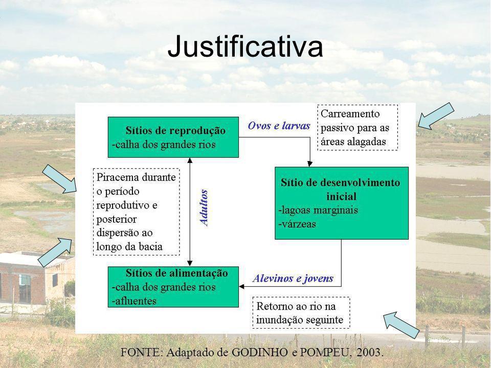 Justificativa FONTE: Adaptado de GODINHO e POMPEU, 2003.