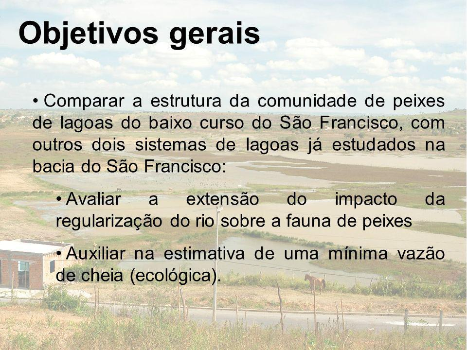 Objetivos gerais Comparar a estrutura da comunidade de peixes de lagoas do baixo curso do São Francisco, com outros dois sistemas de lagoas já estudad