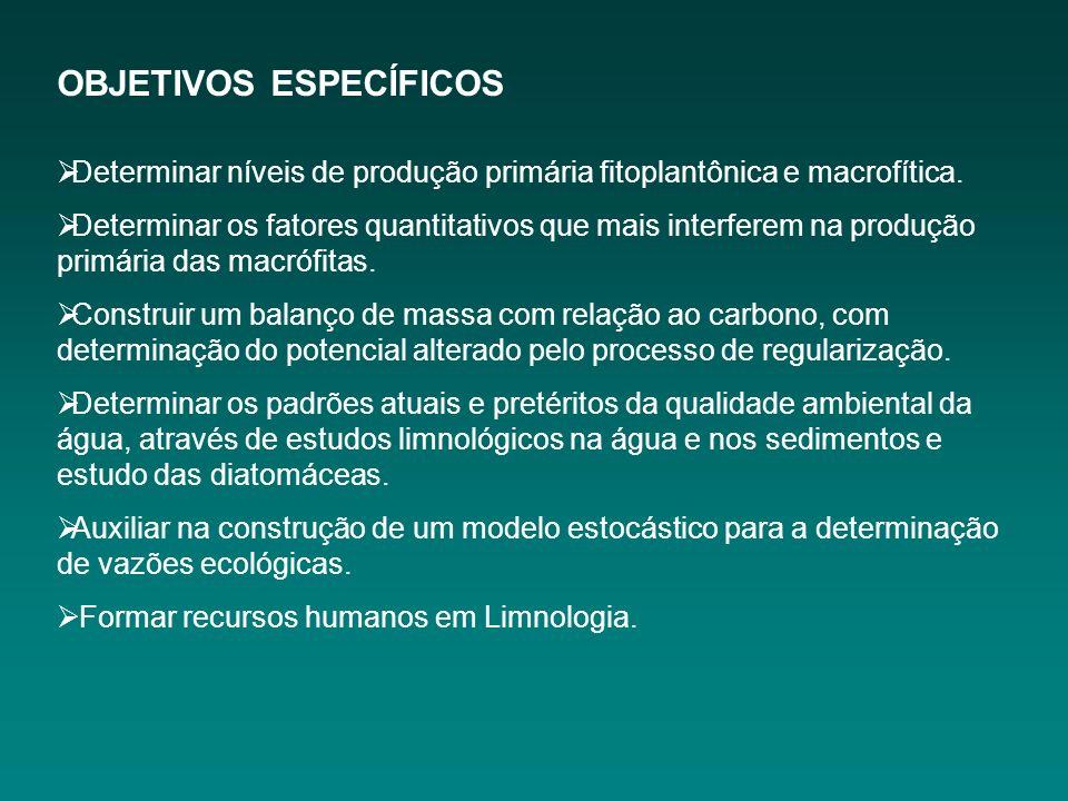 OBJETIVOS ESPECÍFICOS Determinar níveis de produção primária fitoplantônica e macrofítica.