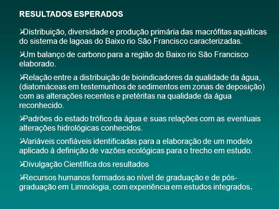 RESULTADOS ESPERADOS Distribuição, diversidade e produção primária das macrófitas aquáticas do sistema de lagoas do Baixo rio São Francisco caracterizadas.