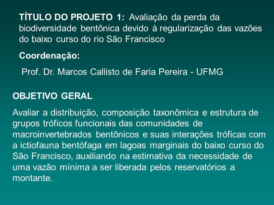 TÍTULO DO PROJETO 1: Avaliação da perda da biodiversidade bentônica devido à regularização das vazões do baixo curso do rio São Francisco Coordenação: Prof.