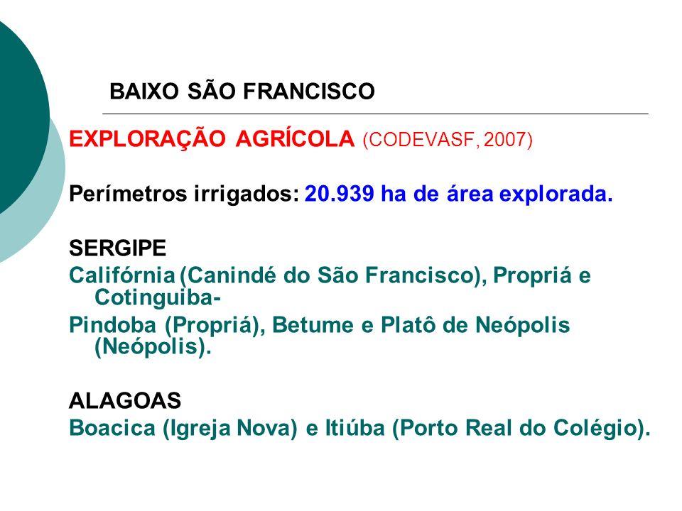BAIXO SÃO FRANCISCO EXPLORAÇÃO AGRÍCOLA (CODEVASF, 2007) Perímetros irrigados: 20.939 ha de área explorada. SERGIPE Califórnia (Canindé do São Francis