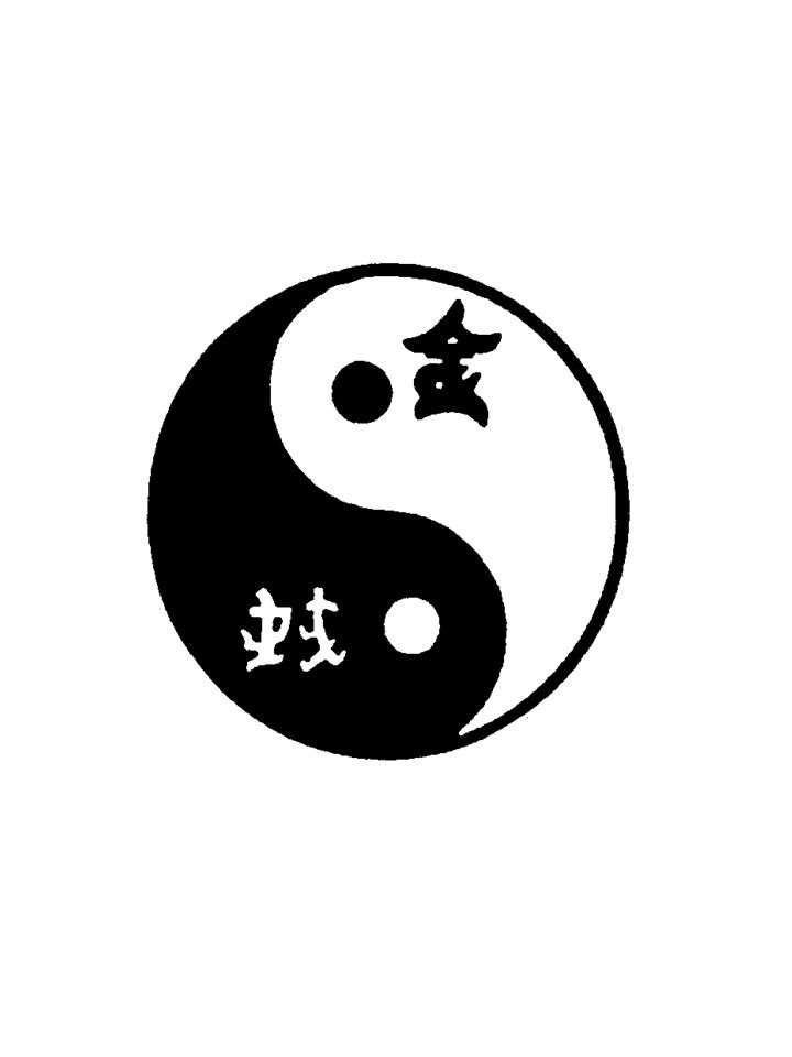 JOVEM YIN Yang Yin JOVEM YANG O Tao compreende duas forças opostas que interagem dialeticamente – Yin e Yang.
