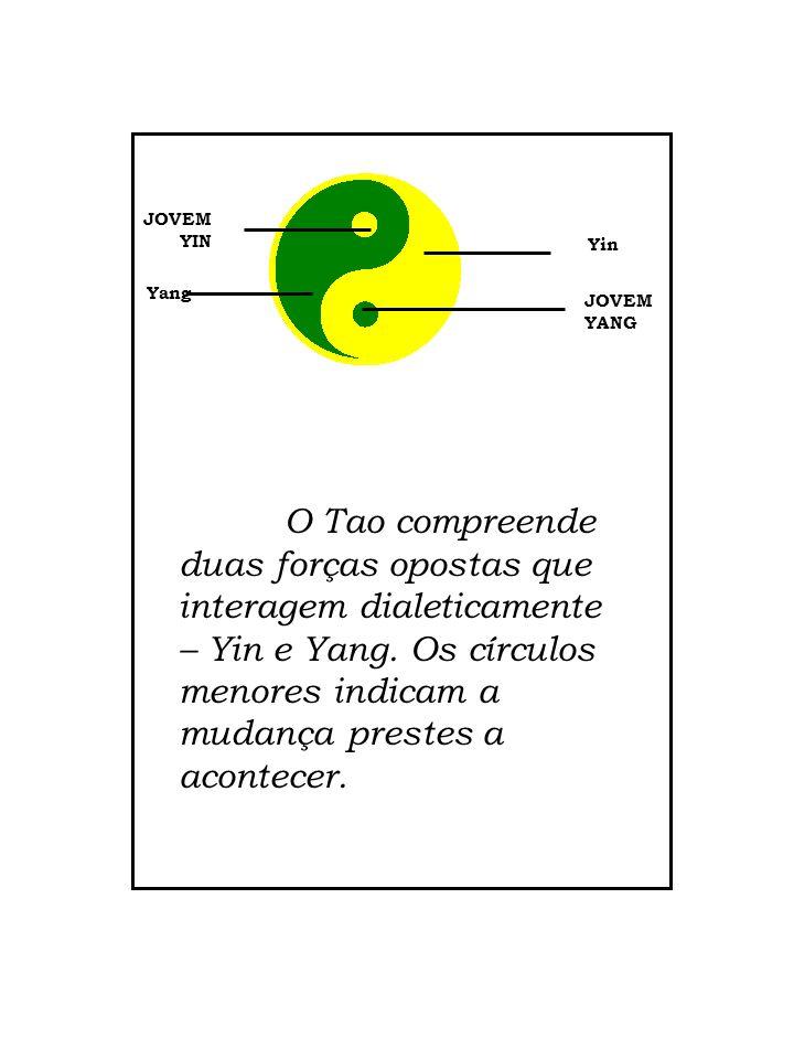 JOVEM YIN Yang Yin JOVEM YANG O Tao compreende duas forças opostas que interagem dialeticamente – Yin e Yang. Os círculos menores indicam a mudança pr
