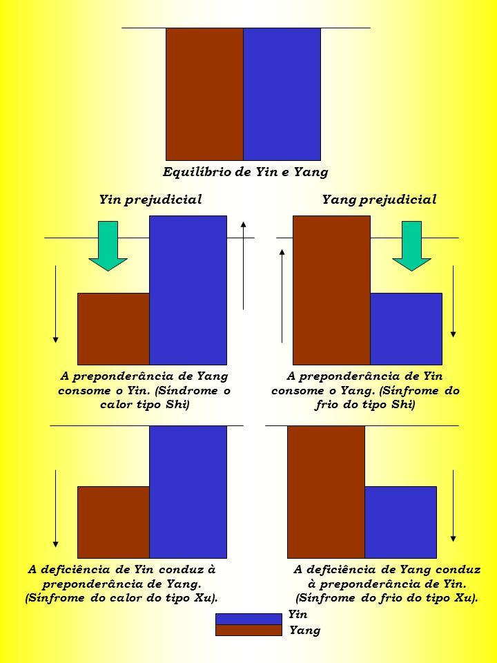 Equilíbrio de Yin e Yang Yin prejudicialYang prejudicial A preponderância de Yang consome o Yin. (Síndrome o calor tipo Shi) A preponderância de Yin c