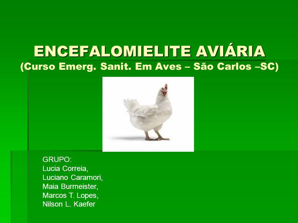 CONCEITUAÇÃO: Doença Infecciosa causada por um enterovírus da família Picornaviridae, que afeta naturalmente as galinhas, perus, faisões e codornas.