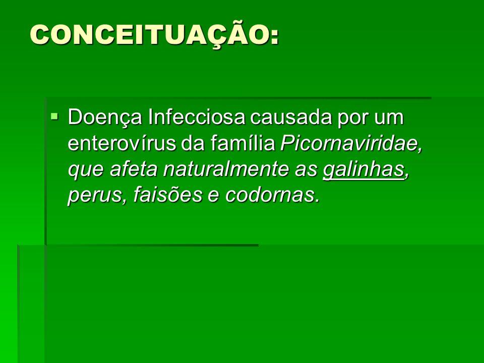 CONCEITUAÇÃO: Doença Infecciosa causada por um enterovírus da família Picornaviridae, que afeta naturalmente as galinhas, perus, faisões e codornas. D