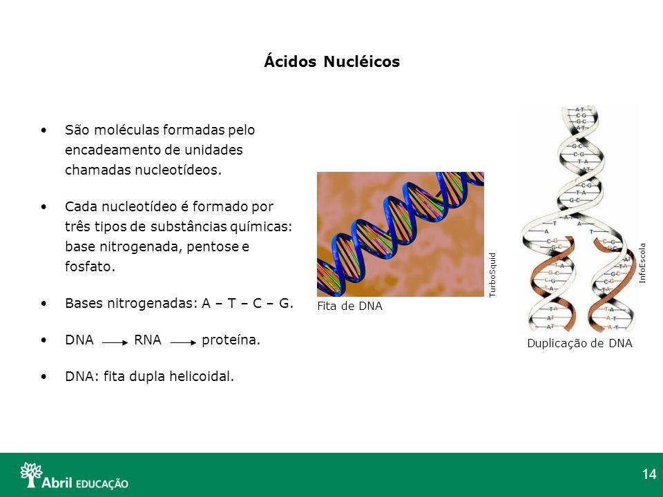 14 Ácidos Nucléicos São moléculas formadas pelo encadeamento de unidades chamadas nucleotídeos. Cada nucleotídeo é formado por três tipos de substânci