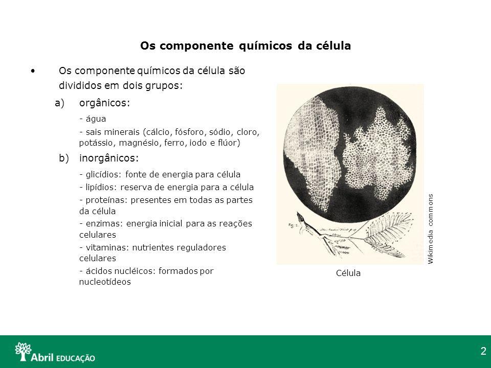 2 Os componente químicos da célula Os componente químicos da célula são divididos em dois grupos: a)orgânicos: - água - sais minerais (cálcio, fósforo