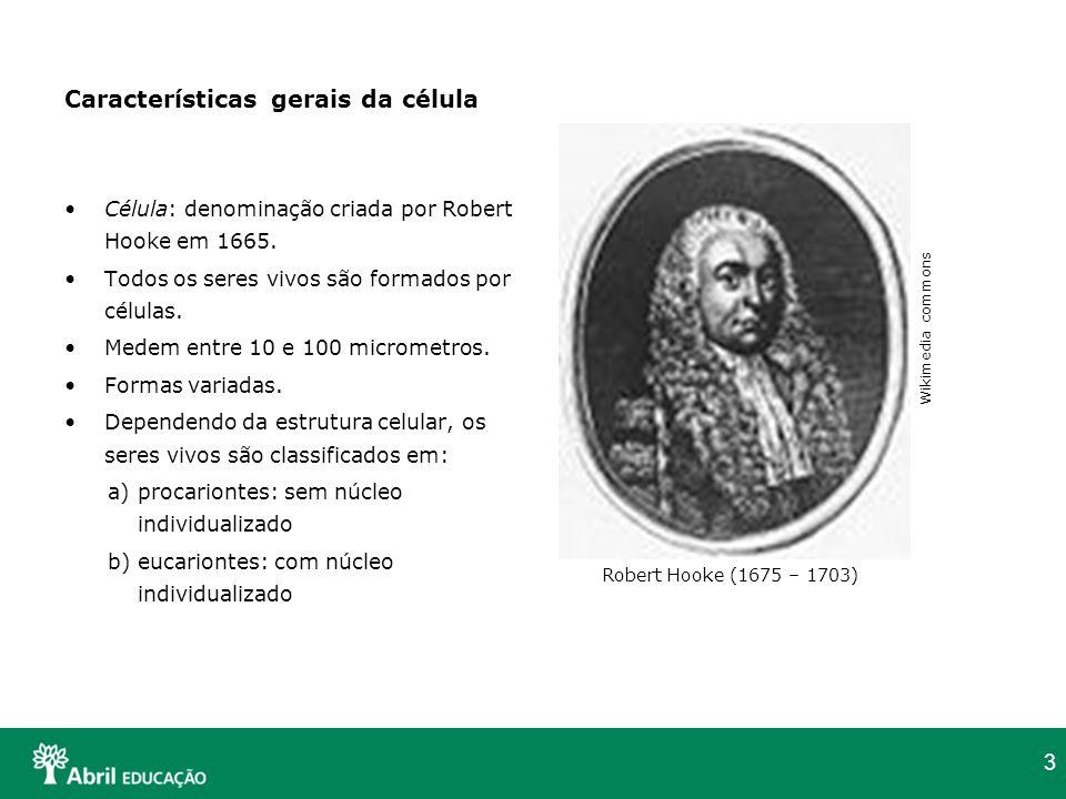 3 Características gerais da célula Célula: denominação criada por Robert Hooke em 1665. Todos os seres vivos são formados por células. Medem entre 10