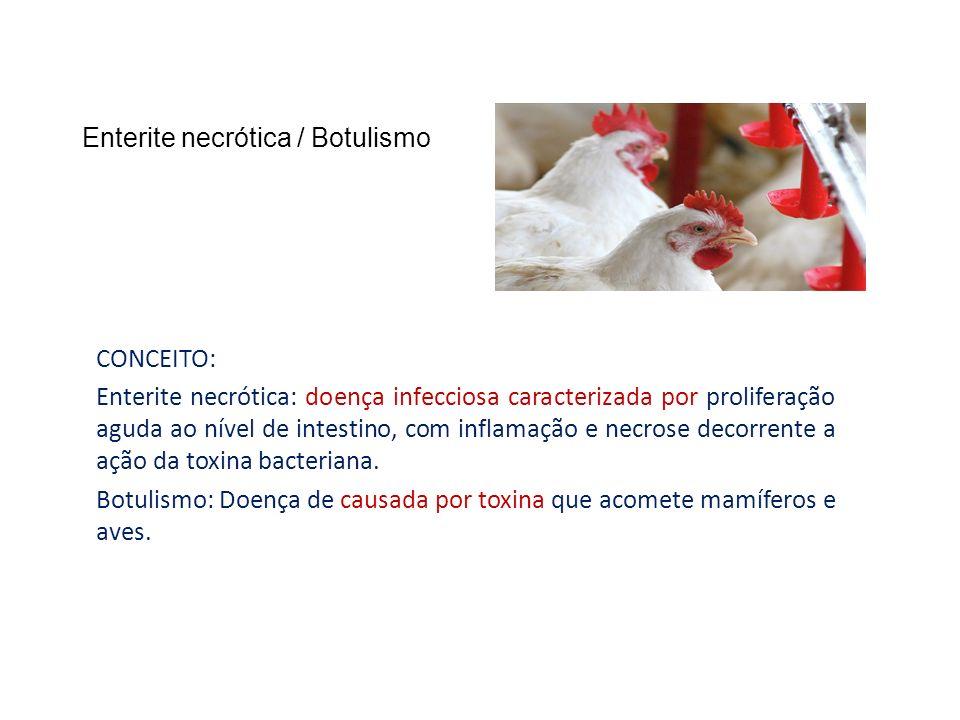 Enterite necrótica / Botulismo CONCEITO: Enterite necrótica: doença infecciosa caracterizada por proliferação aguda ao nível de intestino, com inflama