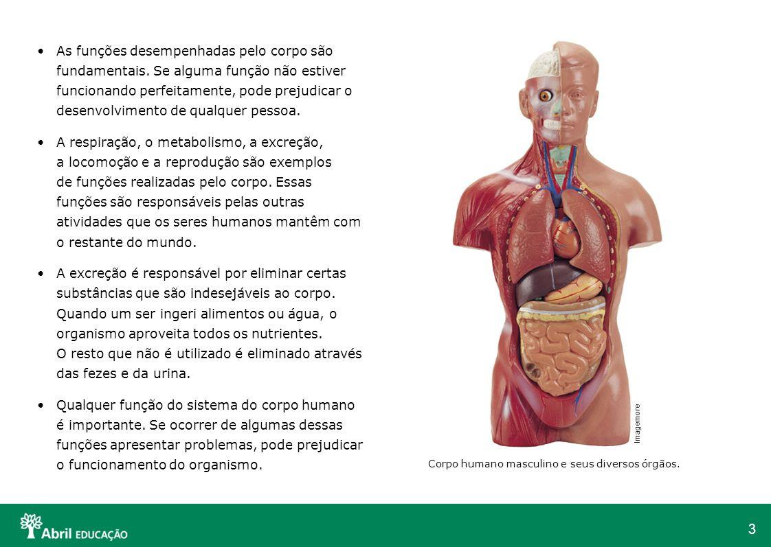 4 Os sistemas do corpo humano O corpo humano realiza trabalhos para manter-se vivo: a digestão a respiração a circulação a excreção Quando algum desses trabalhos para de funcionar, o ser humano fica doente ou morre.
