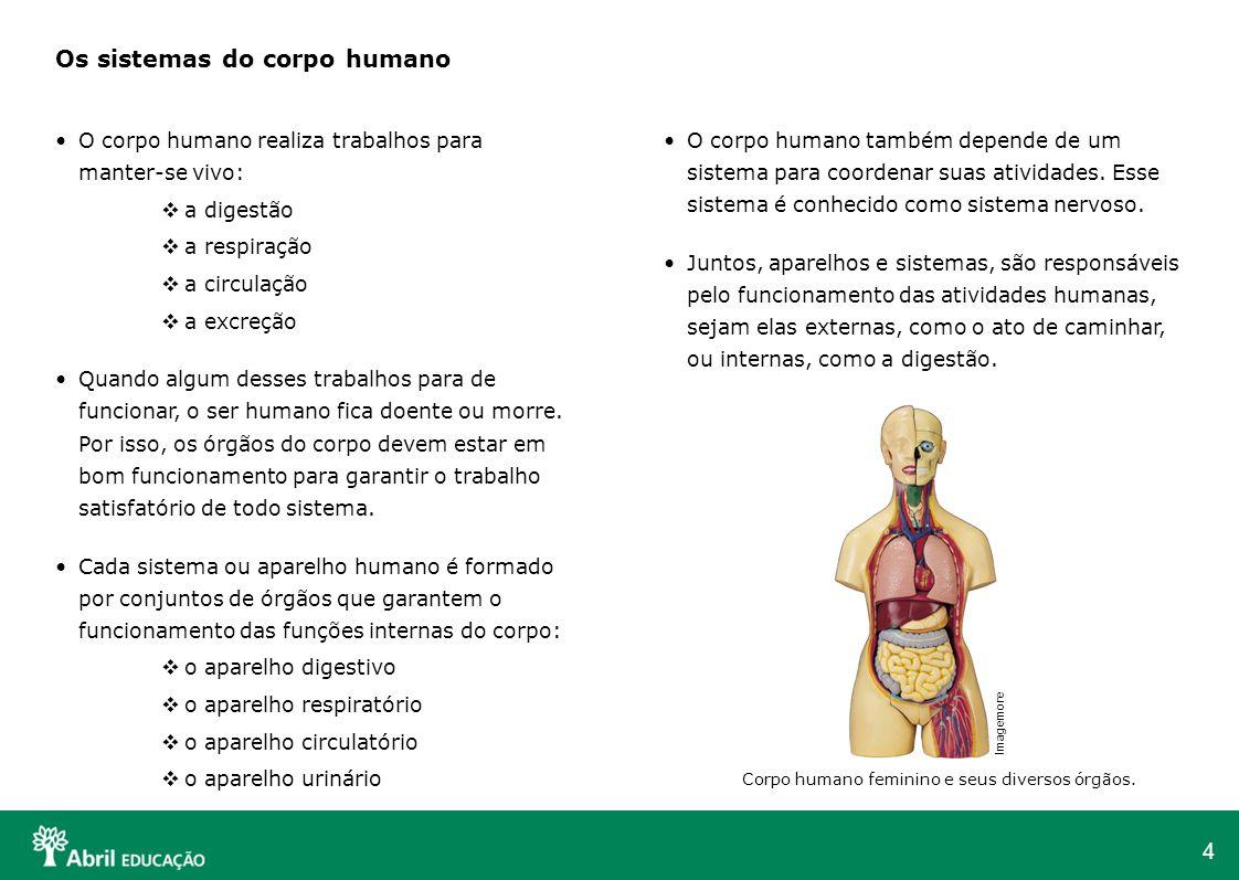 4 Os sistemas do corpo humano O corpo humano realiza trabalhos para manter-se vivo: a digestão a respiração a circulação a excreção Quando algum desse