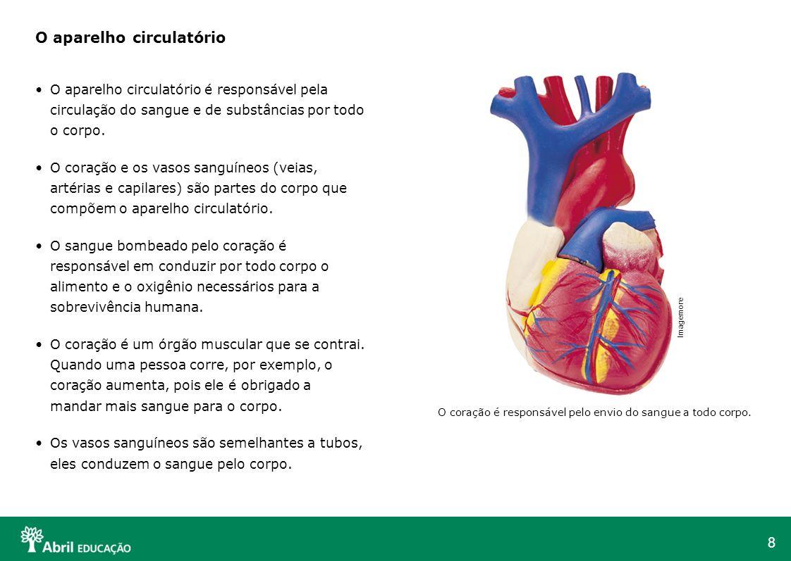 8 O aparelho circulatório O aparelho circulatório é responsável pela circulação do sangue e de substâncias por todo o corpo. O coração e os vasos sang