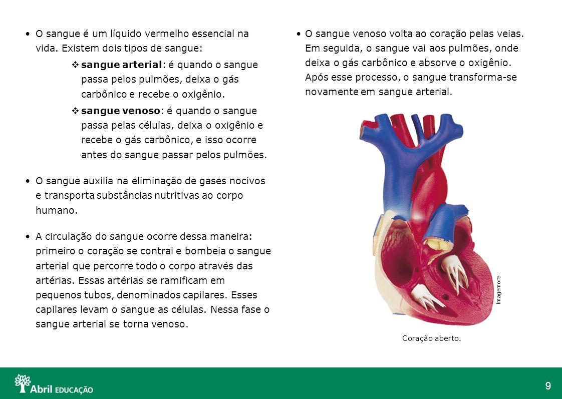 9 O sangue é um líquido vermelho essencial na vida. Existem dois tipos de sangue: sangue arterial: é quando o sangue passa pelos pulmões, deixa o gás