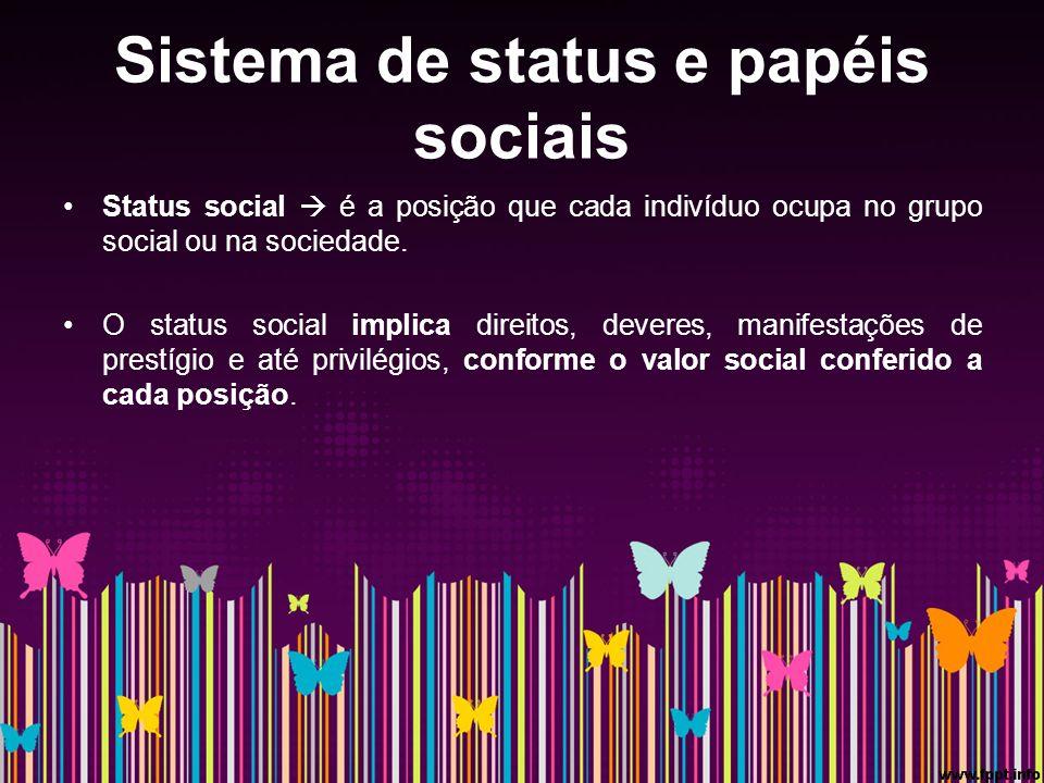 Sistema de status e papéis sociais Status social é a posição que cada indivíduo ocupa no grupo social ou na sociedade.