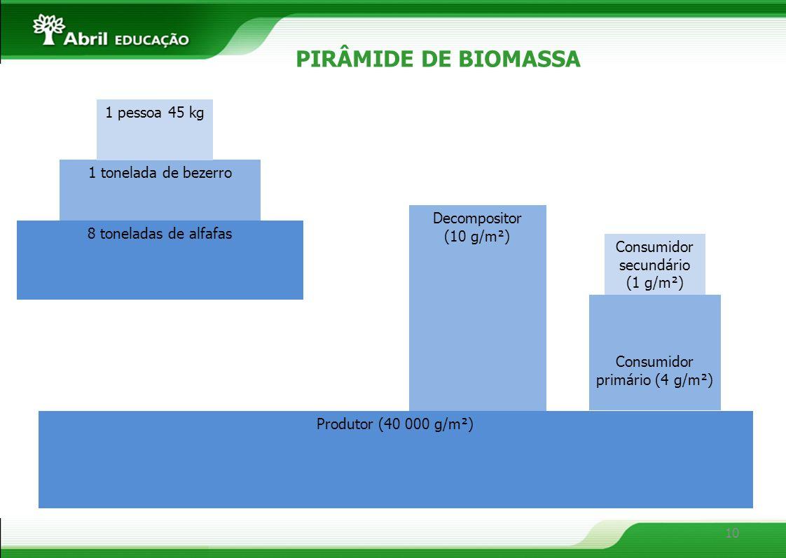 10 PIRÂMIDE DE BIOMASSA 8 toneladas de alfafas 1 tonelada de bezerro 1 pessoa 45 kg Produtor (40 000 g/m²) Decompositor (10 g/m²) Consumidor secundári