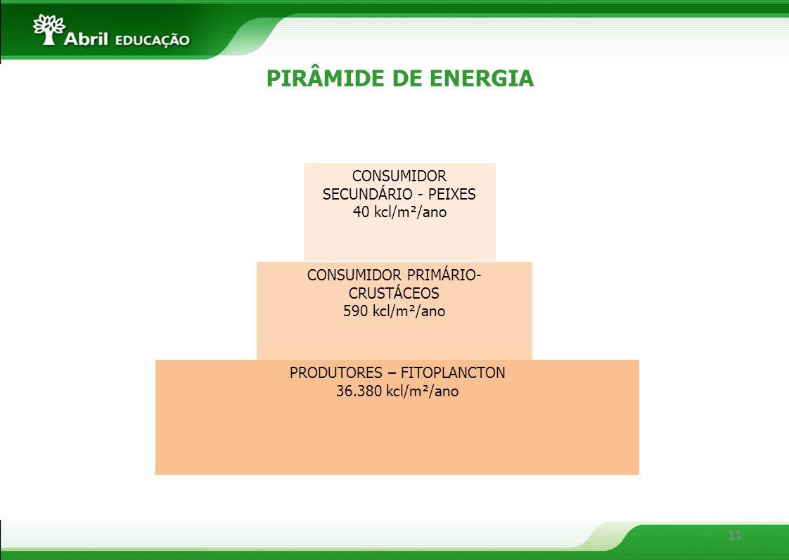 11 PIRÂMIDE DE ENERGIA PRODUTORES – FITOPLANCTON 36.380 kcl/m²/ano CONSUMIDOR PRIMÁRIO- CRUSTÁCEOS 590 kcl/m²/ano CONSUMIDOR SECUNDÁRIO - PEIXES 40 kc